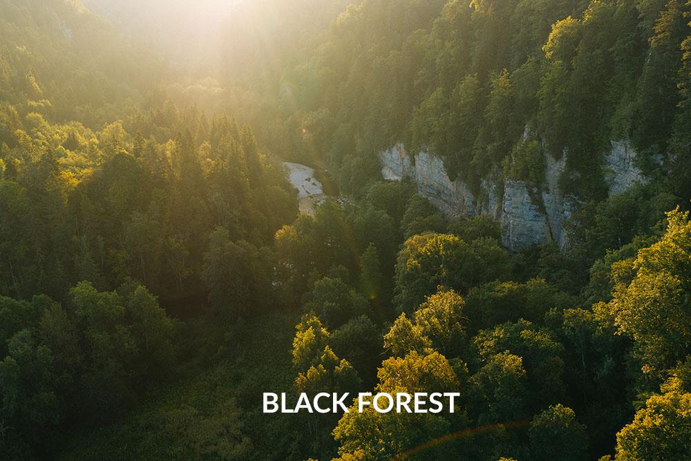 Filmemacher Schwarzwald Freiburg_Black Forest from Above