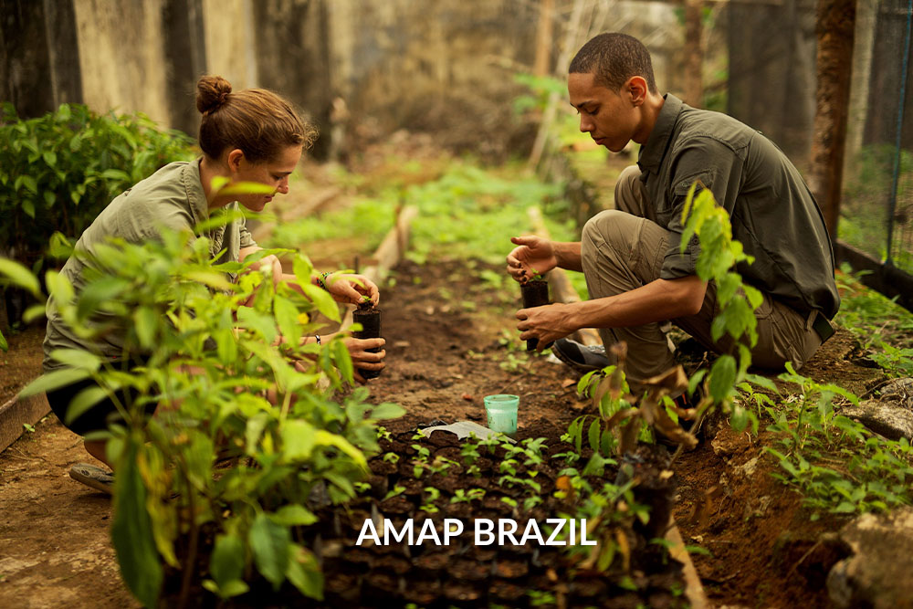 Filmemacher Schwarzwald Freiburg_Brazil Tree Planting Project