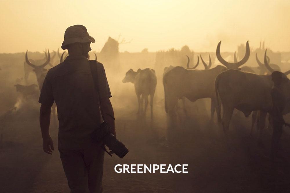 Filmemacher Schwarzwald Freiburg_Greenpeace